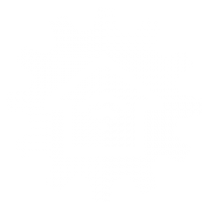 smart home solutions icon